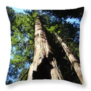 Blue Sky Big Redwood Trees Forest Art Prints Baslee Troutman Throw Pillow