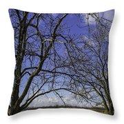 Blue Sky December Throw Pillow