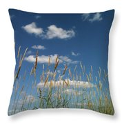 Blue Sky Drive-in Throw Pillow