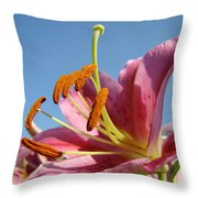 Blue Sky Florals Art Pink Calla Lily Blooming Baslee Troutman Throw Pillow