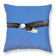Blue Sky Glide Throw Pillow