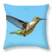 Blue Sky Hummingbird Throw Pillow