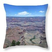 A Closer Look At Indian Garden Throw Pillow