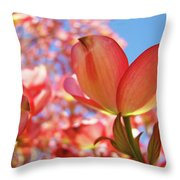Blue Sky Pink Azalea Dogwood Flowers 4 Landscape Nature Artwork Throw Pillow