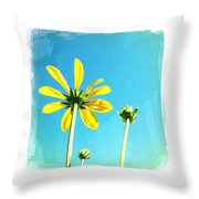 Blue Sky Sunny Daisy Throw Pillow
