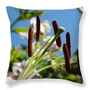 Blue Sky Sunny Floral Pink Lily Flower Baslee Troutman Throw Pillow