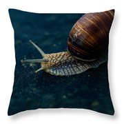 Blue Snail Throw Pillow