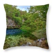 Blue Springs II Throw Pillow