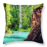 Blue Springs Throw Pillow