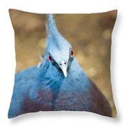 Blue Stare Throw Pillow