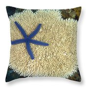 Blue Starfish Throw Pillow