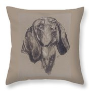 Blue Tick Coonhound Throw Pillow
