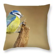 Blue Tit Perched Throw Pillow