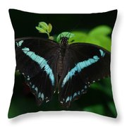 Blue Triangle Butterfly Throw Pillow