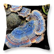 Blue Turkeytail Fungi Throw Pillow