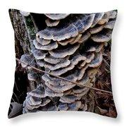 Blue Turkeytail Tree Throw Pillow