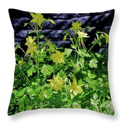 Blue Wall Yellow Columbine Throw Pillow