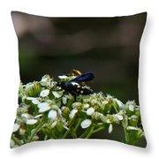 Blue Wasp 1 Throw Pillow