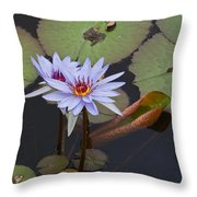Blue Water Lilies Of Belize Throw Pillow