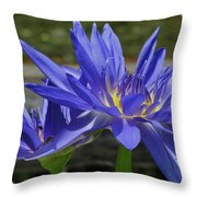 Blue Water Lily Throw Pillow