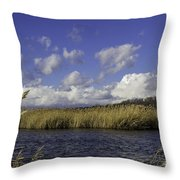 Blue Waters Of The Marsh Throw Pillow