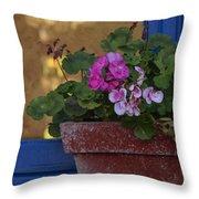 Blue Window With Geraniums Throw Pillow