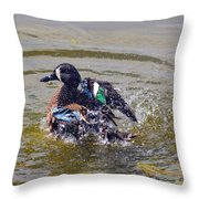 Blue Winged Teal 5 Throw Pillow