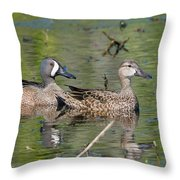 Male And Female Blue-winged Teal  Throw Pillow