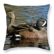 Blue Winged Teal Pair Throw Pillow
