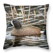 Blue Winged Teal Throw Pillow
