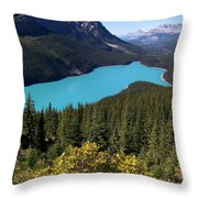 Blue Wolf In The Valley Throw Pillow