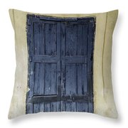 Blue Wood Door Throw Pillow