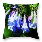 Bluebell 21 Throw Pillow
