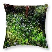 Bluebell 23 Throw Pillow