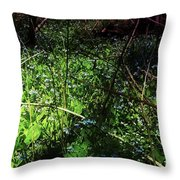 Bluebell 24 Throw Pillow