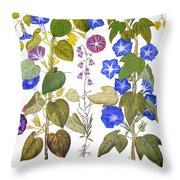 Bluebell And Morning Glory Throw Pillow
