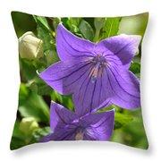 Bluebell Stars Throw Pillow