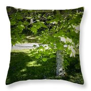 Bluebells In Killarney National Park Ireland Throw Pillow