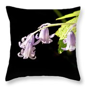 Bluebells Under The Sun Ray. Throw Pillow