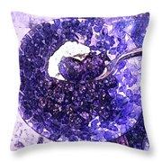 Blueberries For Breakfast Throw Pillow