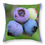 Blueberries On The Vine 2 Throw Pillow