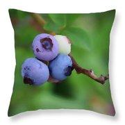 Blueberries On The Vine 3 Throw Pillow