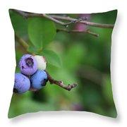 Blueberries On The Vine 4 Throw Pillow