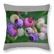 Blueberries On The Vine 5 Throw Pillow