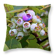 Blueberries On The Vine 7 Throw Pillow