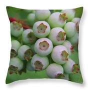Blueberries On The Vine 9 Throw Pillow
