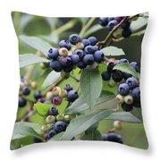 Blueberry Bounty Throw Pillow