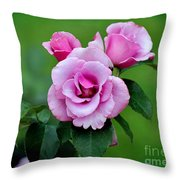 Blueberry Hill Roses Throw Pillow