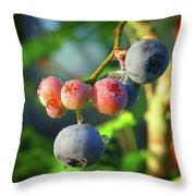 Blueberry Morning Throw Pillow