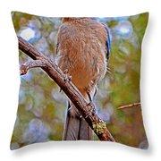 Bluebird 010 Throw Pillow
